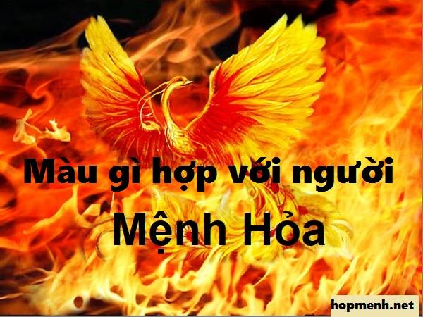 menh-hoa-hop-voi-mau-gi