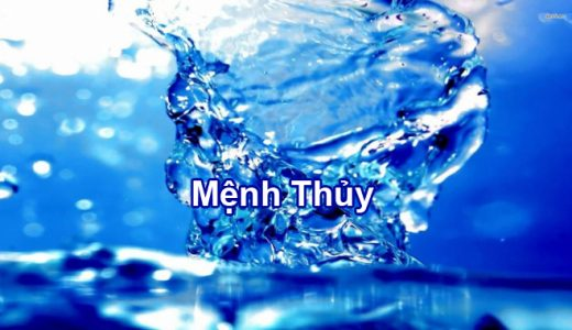 menh-thuy-co-hop-mau-do-den-xanh-vang-nau-khong